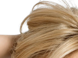 HairStyles Online more hair styles for blonde hair Photo 1